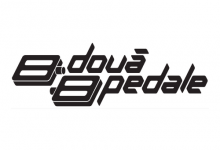 Logo 2 pedale